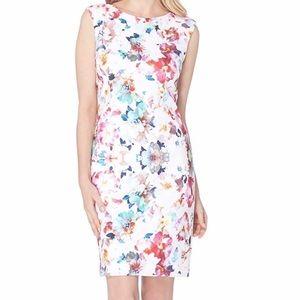 Tahari   Asl Scuba Floral Printed Sheath Dress 12